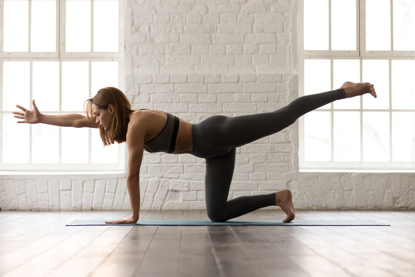 Attractive woman in grey sportswear, bra and leggings practicing yoga, standing in Bird dog pose, beautiful girl doing Donkey Kick exercise at home or in yoga studio with white walls background