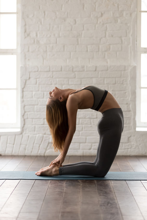 Young attractive woman in grey sportswear, pants and bra practicing yoga, beautiful girl standing in Ustrasana pose, Camel exercise, working out at home or in yoga studio, vertical photo